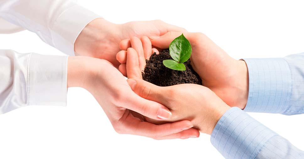 O que fazem as empresas de meio ambiente?