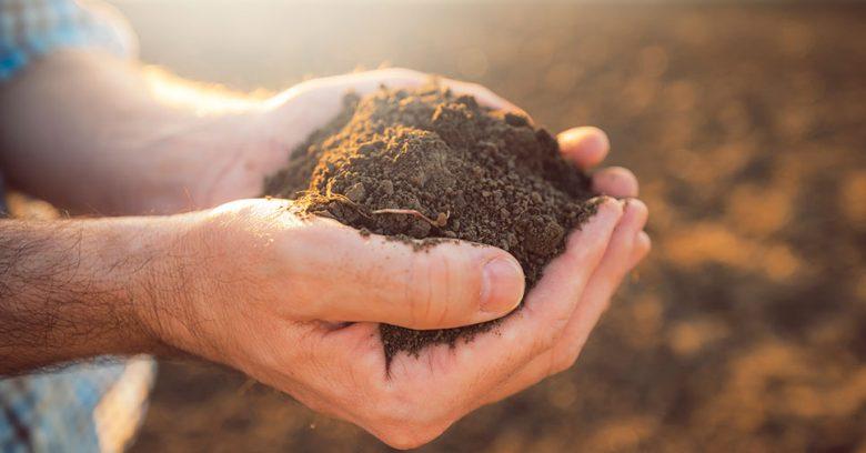 Evitando a contaminação do meio ambiente por agrotóxicos