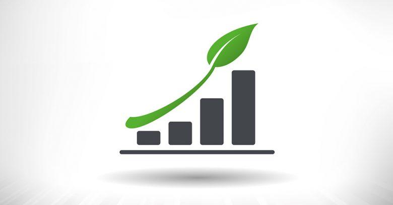 O que leva uma empresa a ser sustentável?