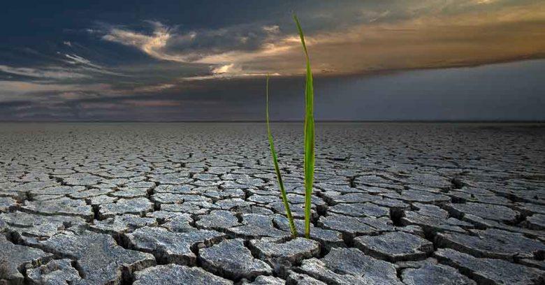 Geologia Ambiental nas empresas