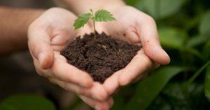 Formas de como preservar o solo.
