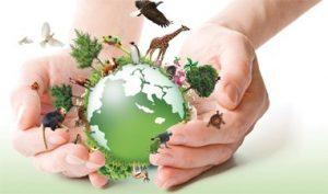 Descubra as principais ameaças à diversidade biológica