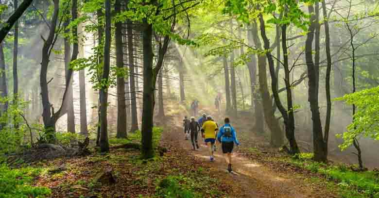 O que é turismo ecológico
