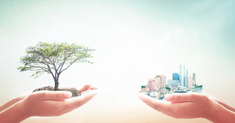 conheça o passivo ambiental