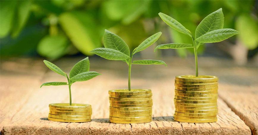 5 dicas para evitar multas ambientais