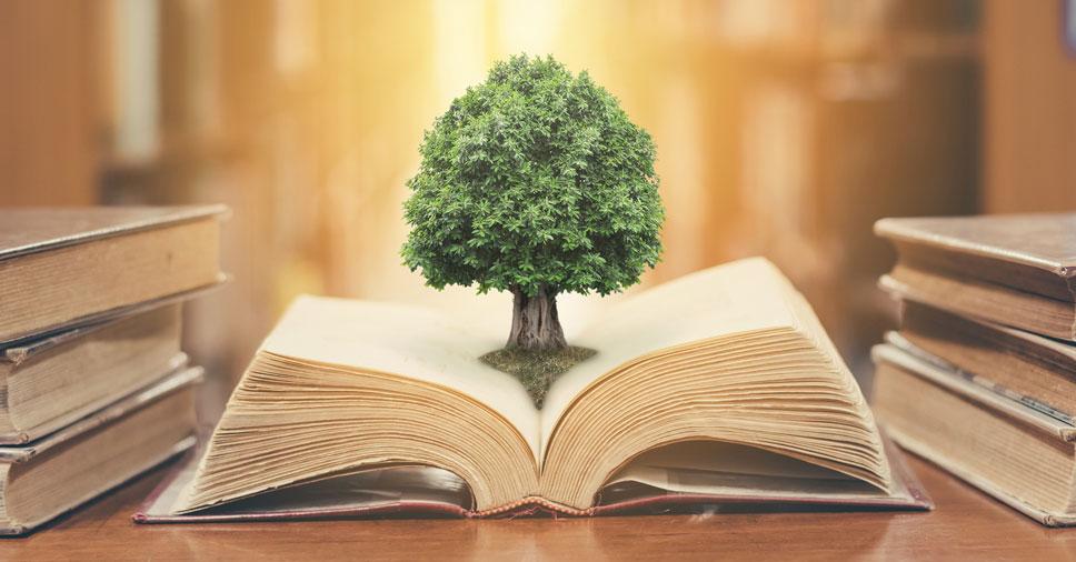 Educação ambiental na gestão escolar