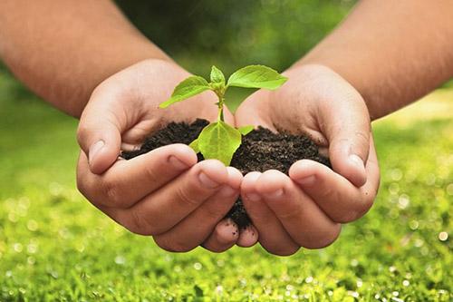Agroecologia utilização de agrotóxicos