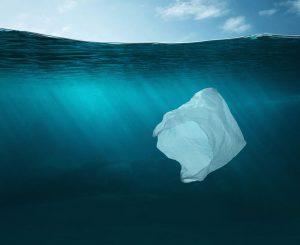 Uso de sacolas plásticas no mar