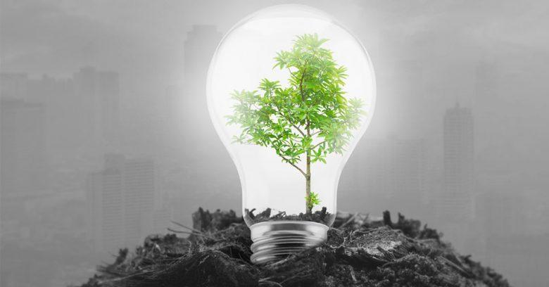 lâmpada como um dos equipamentos sustentáveis