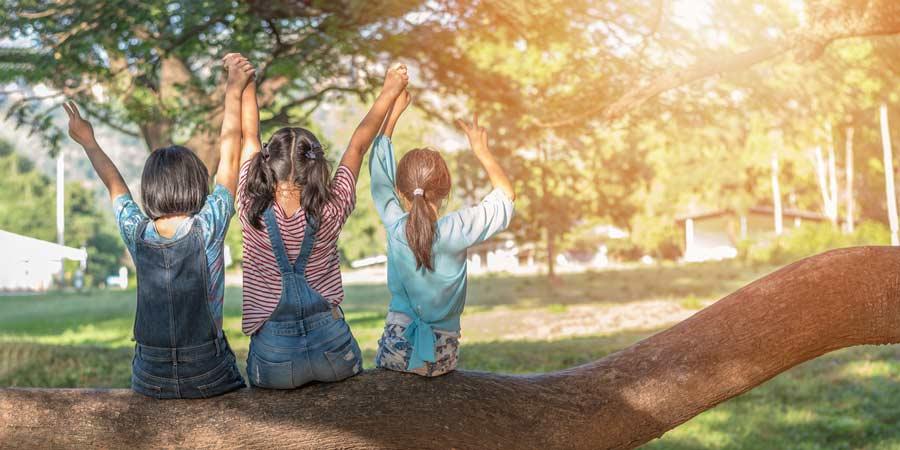 Três crianças sentadas no tronco de uma árvore. Entenda a ligação entre crianças e meio ambiente!
