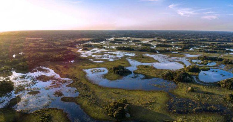 Área que representa uma das zonas úmidas no Brasil