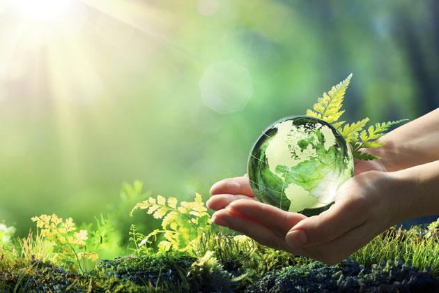 Mãos segurando um globo verde na auditoria ambiental
