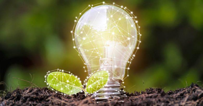 Lâmpada remete à natureza na auditoria ambiental