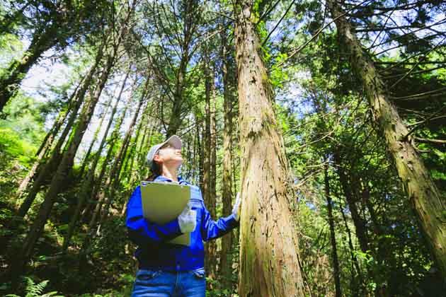 Profissional em campo no Dia do Gestor Ambiental