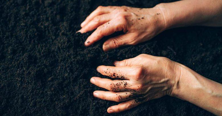 mãos tocando ao solo representa o que é o dia do solo