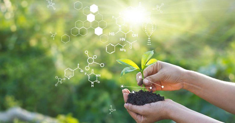 mãos segurando um muda de planta num fundo verde simulando o diagnóstico ambiental